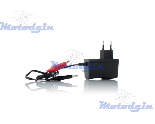 Зарядное устройство аккумулятора 12В