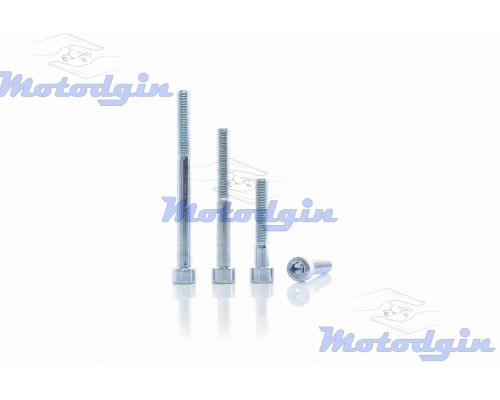 Болты крышки генератора Delta комплект